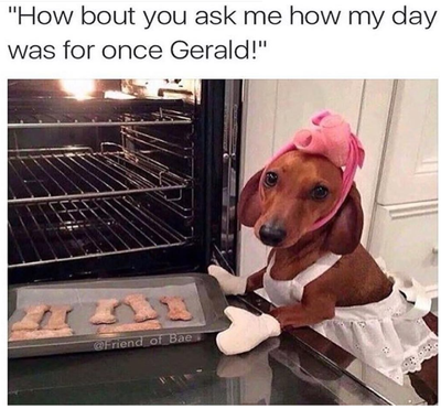 Dog baking.png