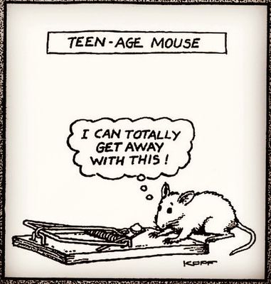 Teenage Mouse.jpg