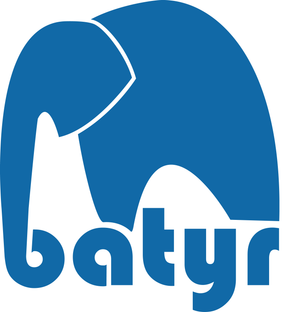batyr logo.png